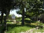 Castello d'Aquino, giardino